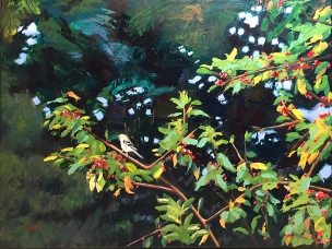 Bird on a Branch, 16x20