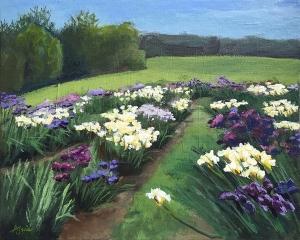 Iris-Farm
